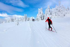 Langlaufen in Noorwegen van