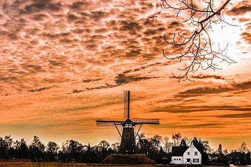 Neunen Noord Brabant