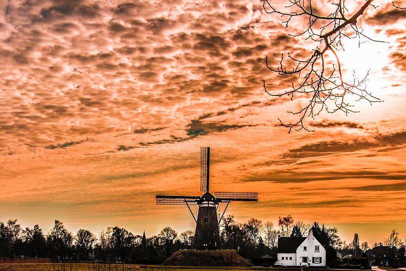Neunen Noord Brabant van Brian Morgan