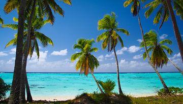 Amuri, Aitutaki - Cook Islands sur Van Oostrum Photography