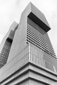 D Rotterdam von Peter Hooijmeijer