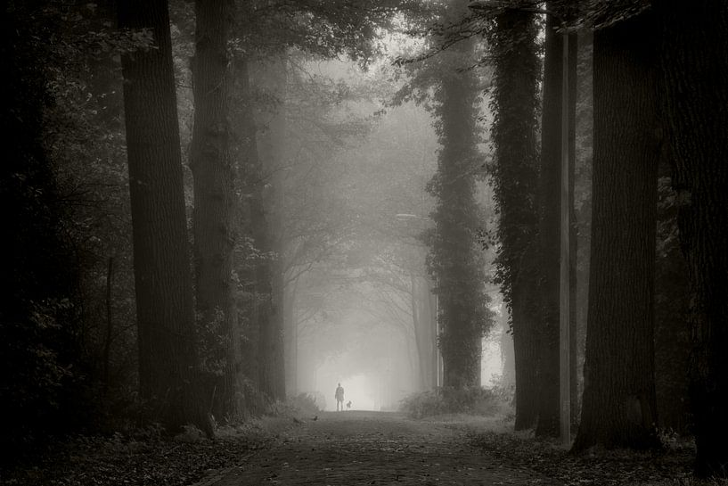 Misty Morning Walk van Martin Podt
