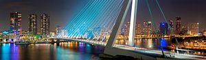 Panorama Rotterdam met de Erasmusbrug