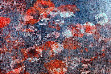 Feld mit Mohnblumen 01 von Marijke de Leeuw - Gabriëlse