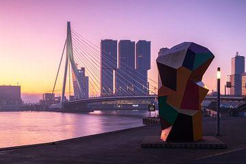 Rosa Sonnenaufgang in Rotterdam von Ilya Korzelius