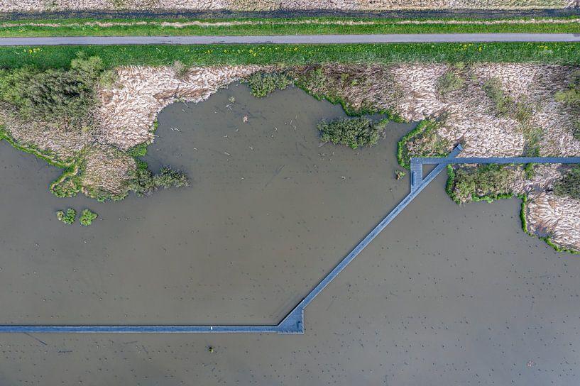 Het verdronken bos van Dick Jeukens