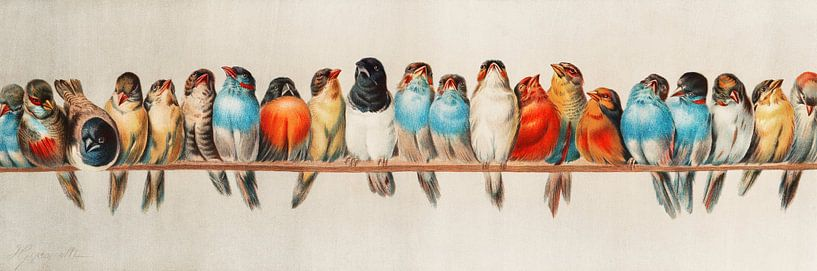 Ein Barsch von Vögeln, Hector Giacomelli (Digitalisiert) von Meesterlijcke Meesters