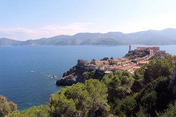Uitzicht op Portoferraio Elba  italië  van Nannie van der Wal