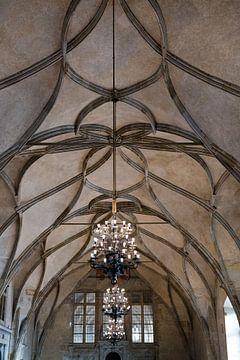 Le plafond d'un château sur Kelvin Middelink