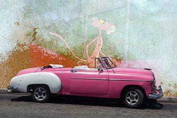Der rosarote Panter von Harald Fischer