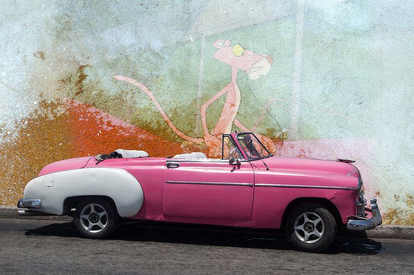 Pink Panther van Harald Fischer