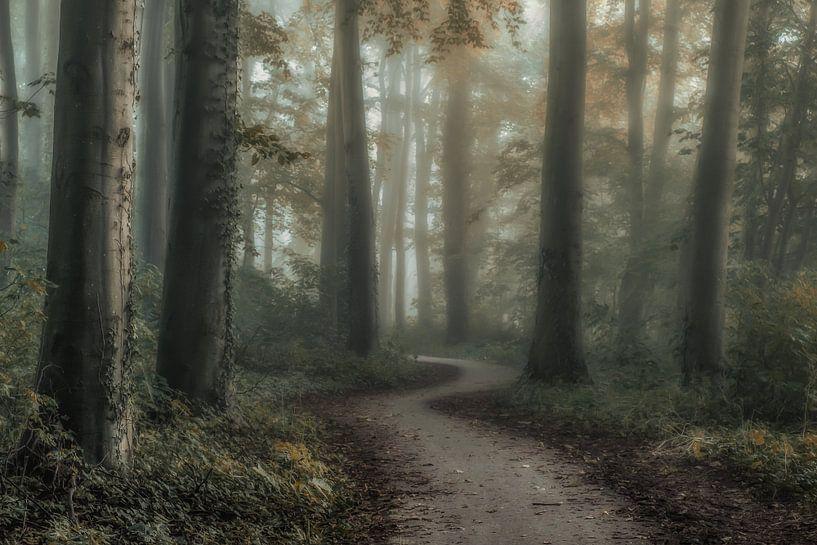 Behind the trees van Niels Barto