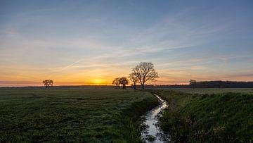 Die Landschaft von Drenthe am Morgen