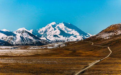 De weg naar Denali