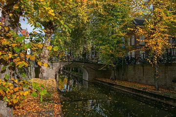 Herfstkleuren aan de Nieuwegracht in Utrecht van Arthur Puls Photography