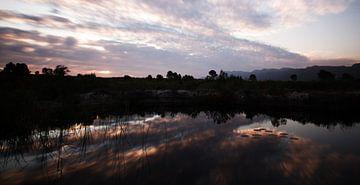 Landschap #pantheraafrica van Minie Drost