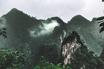 Berge in Thailand von Charlotte de Moet