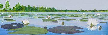 Kortenhoefse plassen, acryl schilderij van Marlies Huijzer van