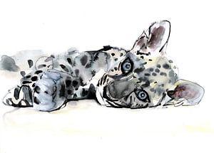 Arabischer Leopardenjunge