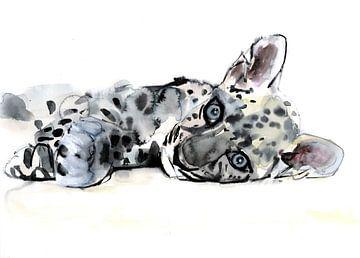 Arabische luipaard-kubus van Mark Adlington