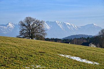 View of the Alps - bavaria van Peter Bergmann