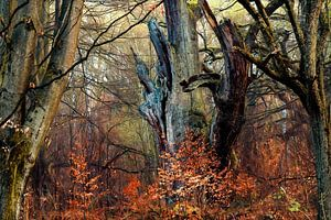 Faun Forest