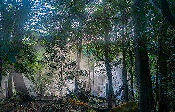 Costa Rica: Rincón de la Vieja Volcano National Park van Maarten Verhees