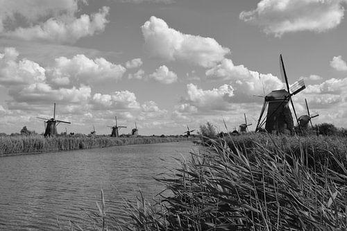 Molens bij Kinderdijk (Zwart Wit)