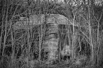 Der Bunker von Faucon Alexis