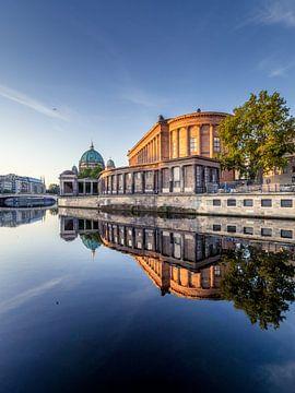 Berliner Dom Spiegelung von Iman Azizi