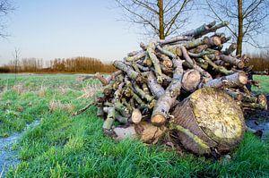een houtstapel