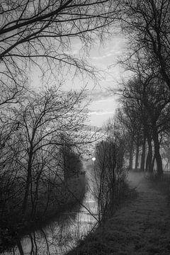 Morning delight van Rik Verslype