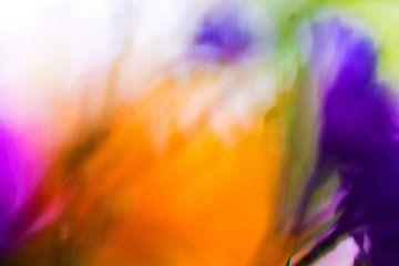 Kleur!03 van Simone Langeweg