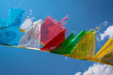 De gebedsvlaggetjes wapperen in de wind, Tibet van Rietje Bulthuis