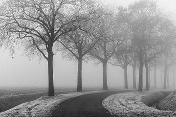 Mistige winterochtend van Marianne van der Westen
