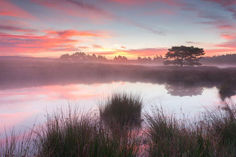 Perfect Morning van Rob Christiaans