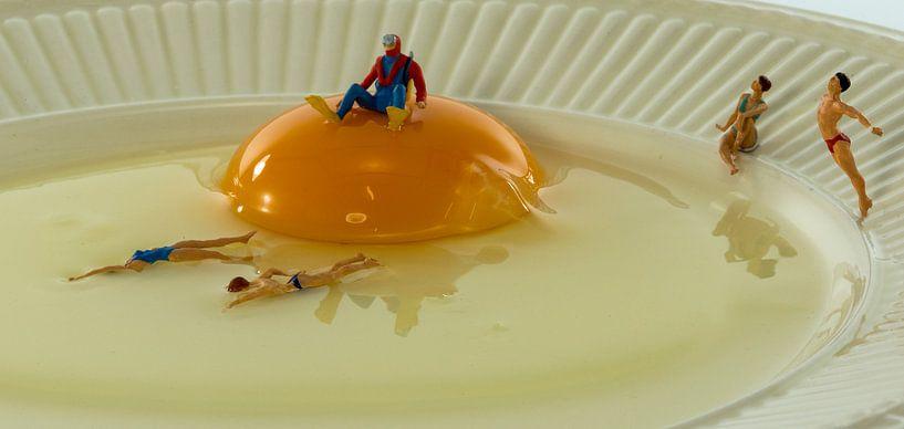 zwemmen in het ei van Compuinfoto .