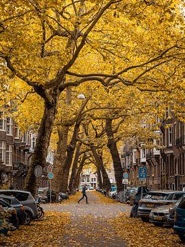 Lomanstraat in Herfst #2