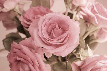 Rosengruss von Dagmar Marina