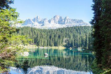 Lago di Carezza van Rene Bakker