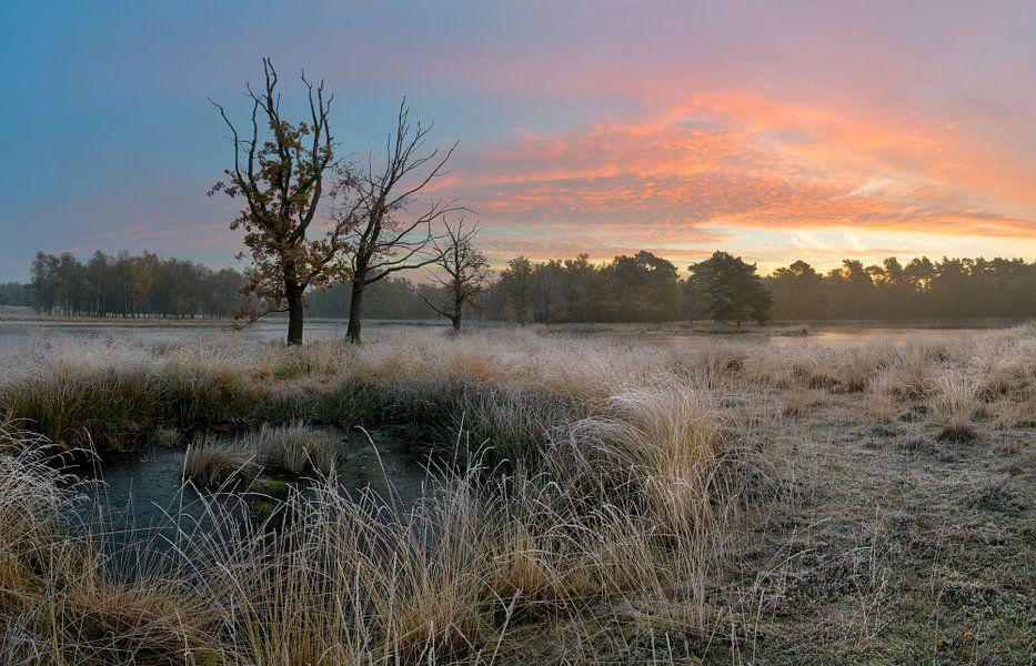 Mooie winterse ochtend in Nederland