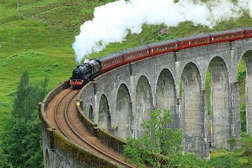 Hogwarts Express von Martien Wassink