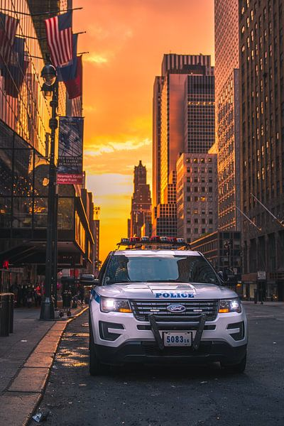 NYPD New York City van Thomas Bartelds