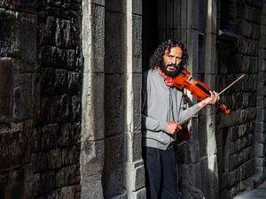 De voorzichtige violist