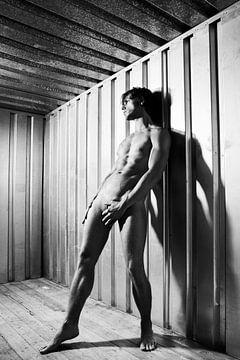 Mooie naakte man gefotografeerd in stalen industrie container.  #A9202 van william langeveld