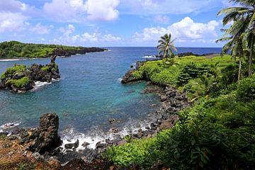 Lavakust op Hawaii van Antwan Janssen