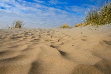 Blik op de duinen van Michel Knikker