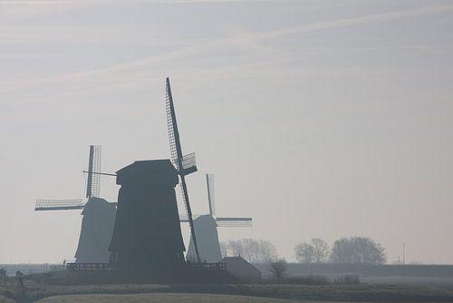 molens in de mist bij Schermerhorn