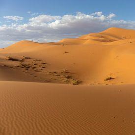 Sahara woestijn, Erg Chebbi-duinen. Merzouga, Marokko, Afrika van Tjeerd Kruse