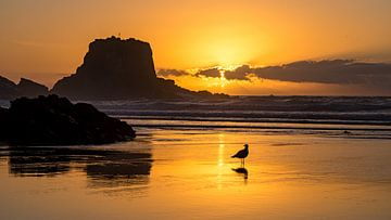 Zonsondergang strand Zambujeira do Mar, Portugal van Jessica Lokker